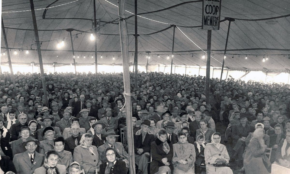 Black and white image of an annual meeting hosted by Eastern Iowa REC with a lot of people under a tent