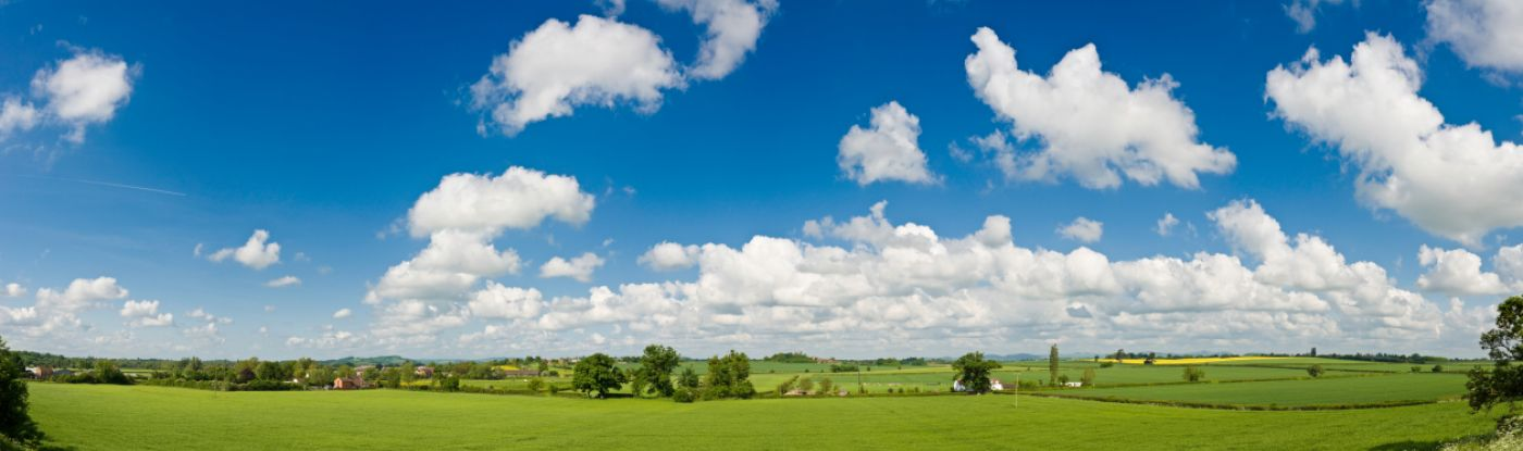A field with bright green grass, blue sky and a bunch of white clouds